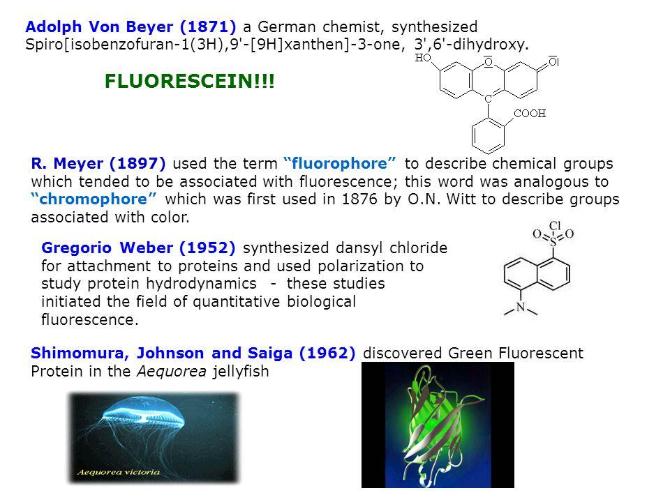 Adolph Von Beyer (1871) a German chemist, synthesized Spiro[isobenzofuran-1(3H),9 -[9H]xanthen]-3-one, 3 ,6 -dihydroxy.